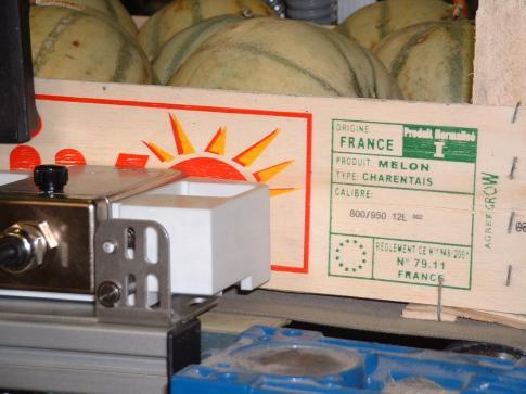Marquage plateau melons